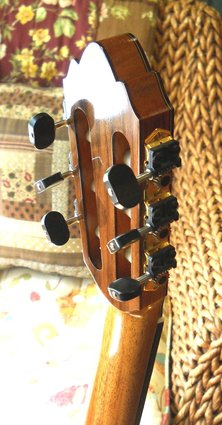 Guitar 2 (3)