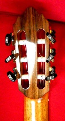 Guitar 2 (5)