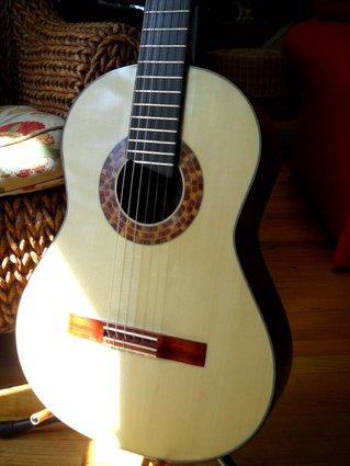 Guitar 2 (8)
